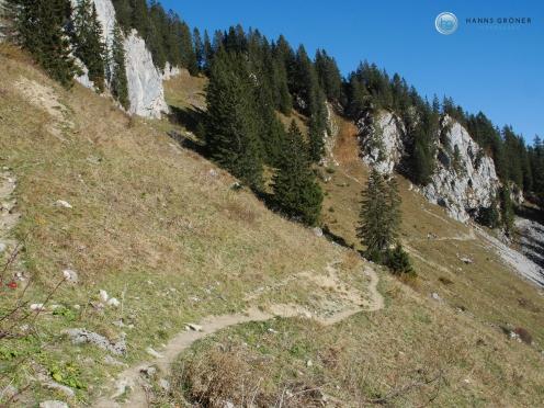 Weg 4a von der Hölzer Hütte zur Stiealm Foto: Hanns Gröner