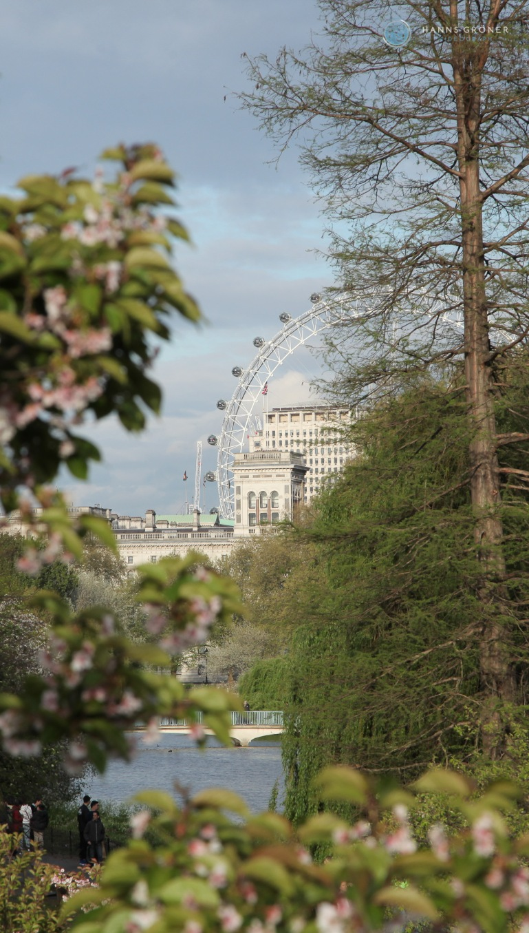 St. James Park - Blick auf London Eye (Foto: Hanns Gröner)